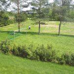 Jalkapallomaaleihin saatin verkot ja varsinaisen kentän vielä kasvaessa hieman, saimme pelata väliaikaisesti pienemmällä nurmella.